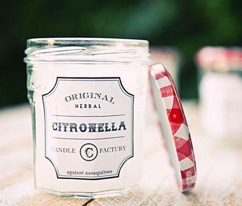 23 DIY Citronella Kerzen, um die Insekten fernzuhalten
